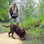 Wildlife Detector Dog Programs Sparks International Interest