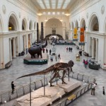 Make More Of Your Black Friday And Visit Some Museums