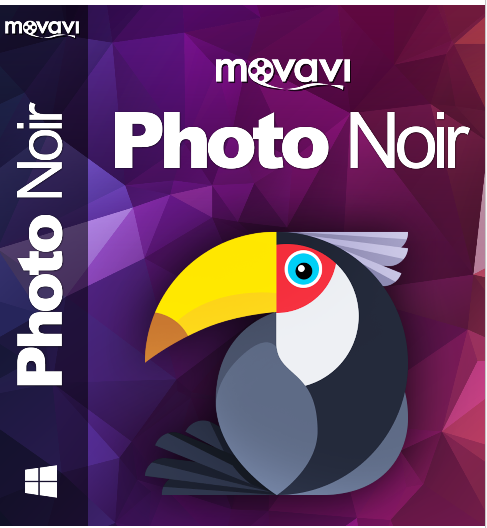 Movavi Photo Noir for Win